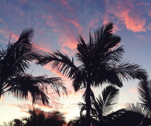 colourfull, sky, and palms image