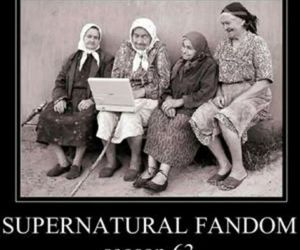 supernatural and fandom image