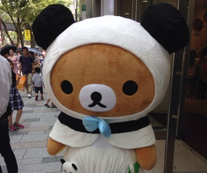 bear, japan, and rilakkuma image