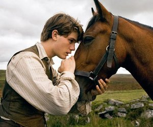 horse and man image