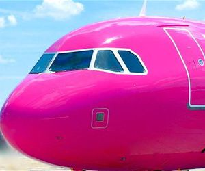 pink and plane image
