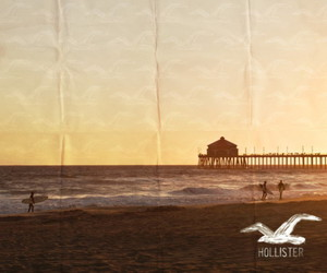 hollister, beach, and sea image