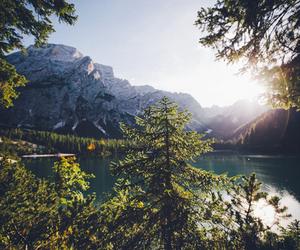nature and beautiful image