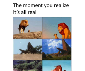 OMG, the lion king, and funny image