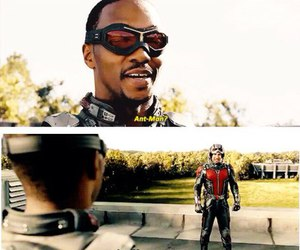 Marvel and ant man image