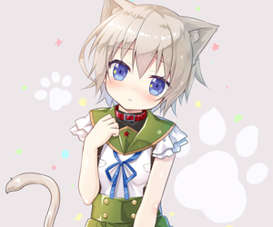 anime, gakkou gurashi, and neko image