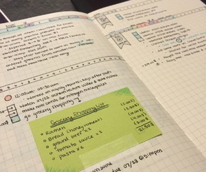 journal, organised, and bullet journal image