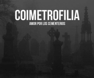 cementerio, coimetrofilia, and amor image