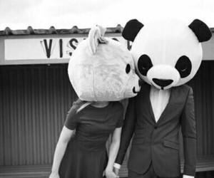 love, panda, and couple image