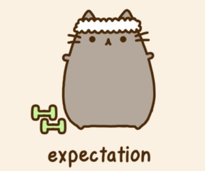 cat, pusheen, and expectation image