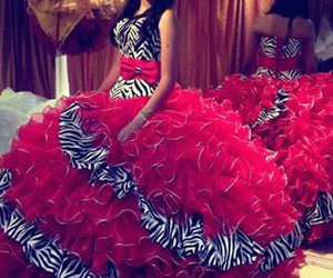 dress, red, and zebra image