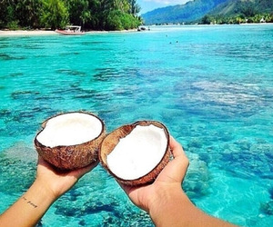 beach, friends, and coconut image