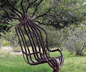 nature, tree, and chair image