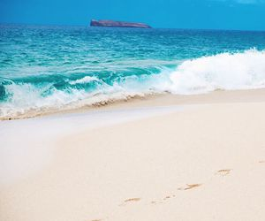 beach, beautiful places, and happines image