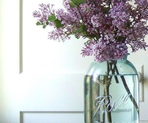 flowers, glass, and jar image