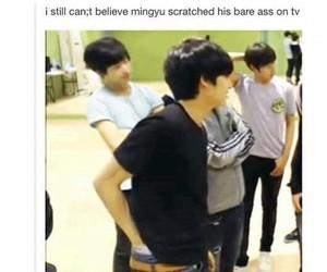 memes, Seventeen, and mingyu image