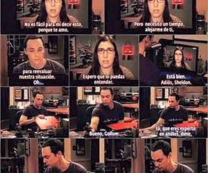 sheldon and the big bang theory image