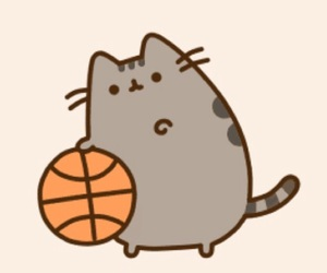 Basketball, cat, and pusheen image