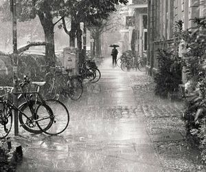rain, black and white, and photography image