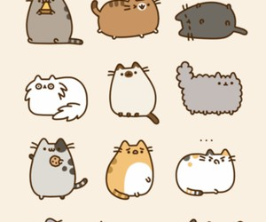 cat, pusheen, and kitty image