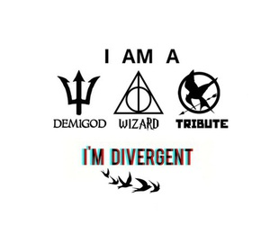 divergent, harry potter, and tribute image