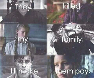 harry potter, the hunger games, and katniss everdeen image