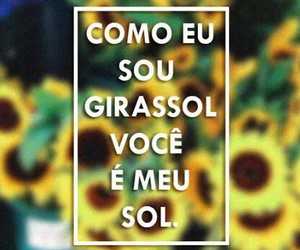 girassol, mpb, and ira! image