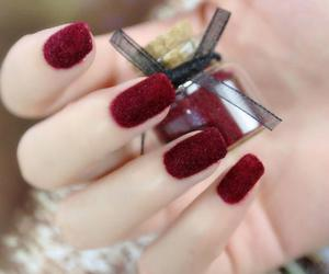 wine red and nails beauty image