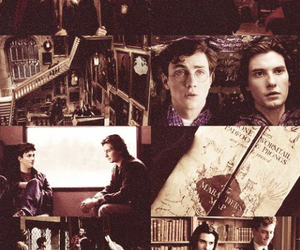 sirius black and james potter image