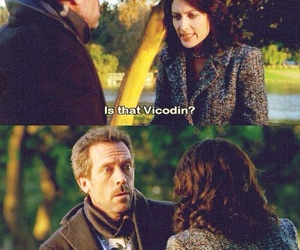 cuddy, dr house, and house image