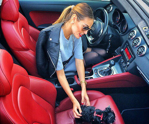 car, puppy, and red image