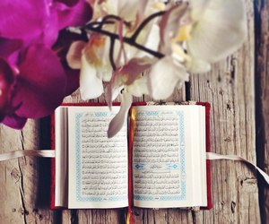 islam, quran, and flowers image