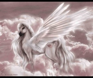 pegasus and unicorn image