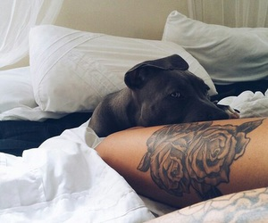 doggie, tattoo, and cute image