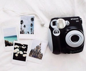 polaroid and camera image