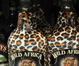 africa, cream, and Baileys image