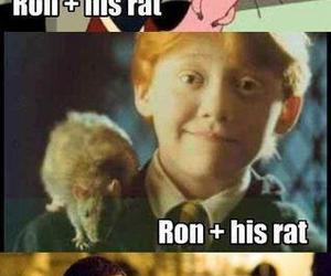 ron, rat, and funny image