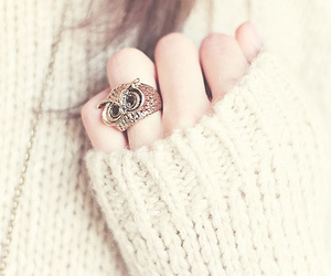 owl, ring, and white image