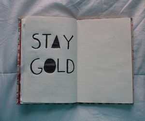 notebook, reminder, and stay gold image