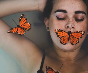 beautiful, butterflies, and creative image