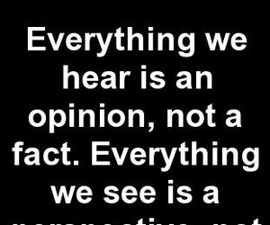 opinion, quotes, and truth image