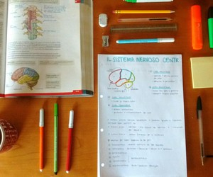 medicine, study, and textbook image