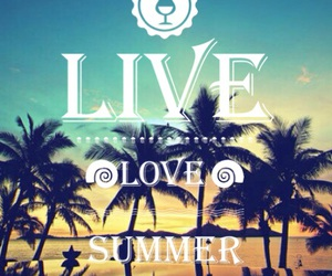 beach, summer, and live image