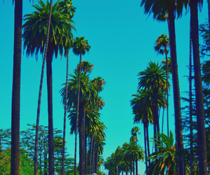 america, Beverly Hills, and cool image