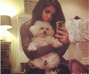 lucy hale and dog image
