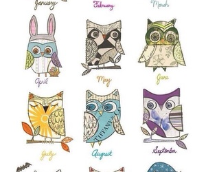 months, owl, and cute image