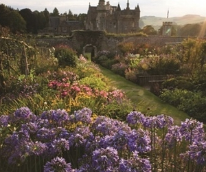 beautiful, countryside, and fairytale image