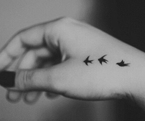 bird, tattoo, and black image