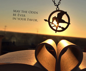 hunger games, mockingjay, and book image
