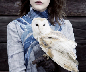 owl, model, and ravenclaw image